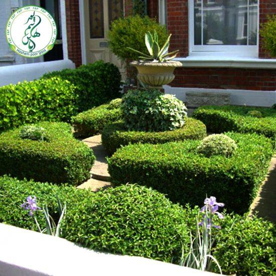 تزئینات فضای سبز